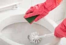 WHY USE TOILET BRUSH